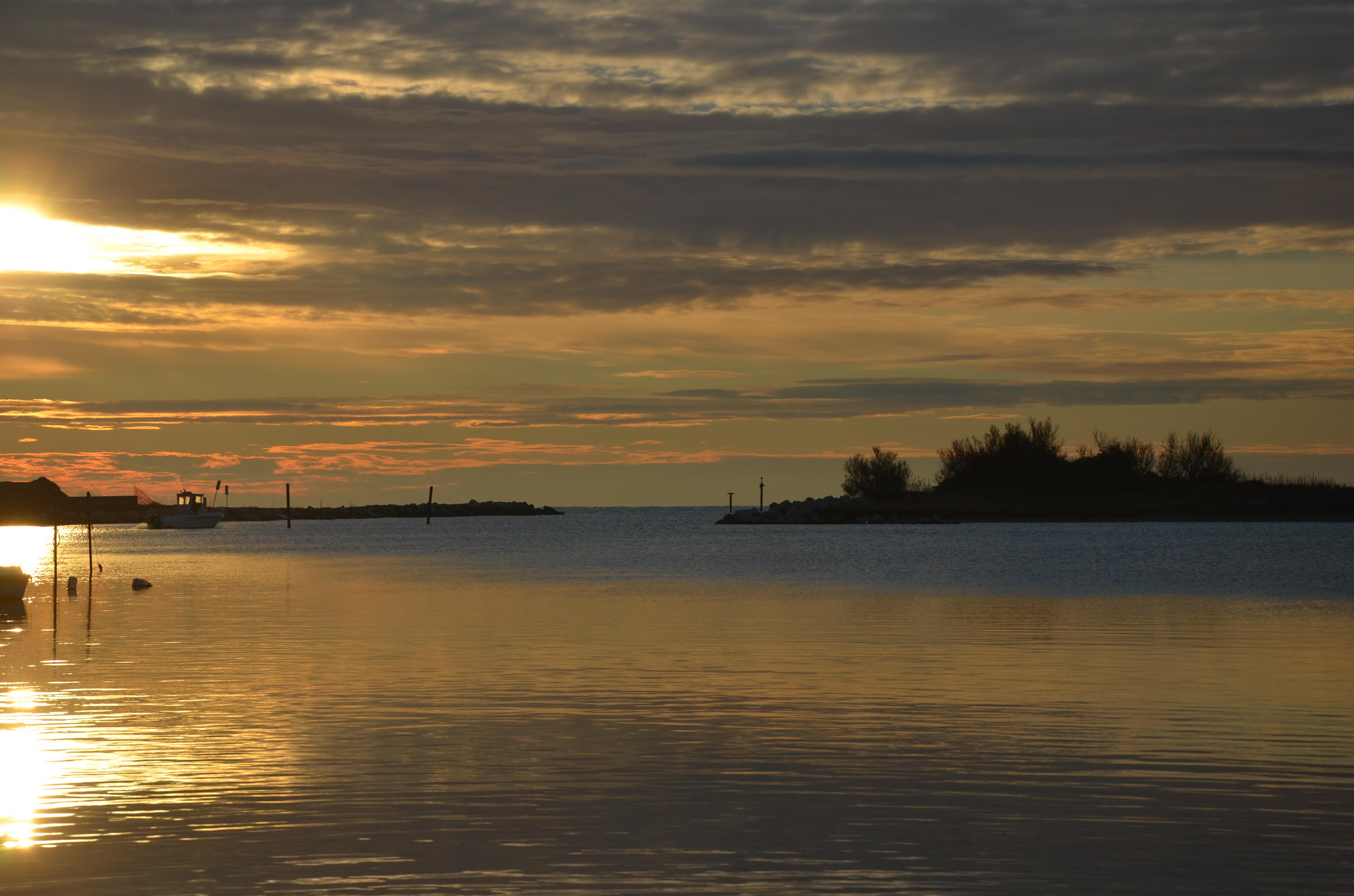 tramonto su mare e pineta a Eraclea Mare